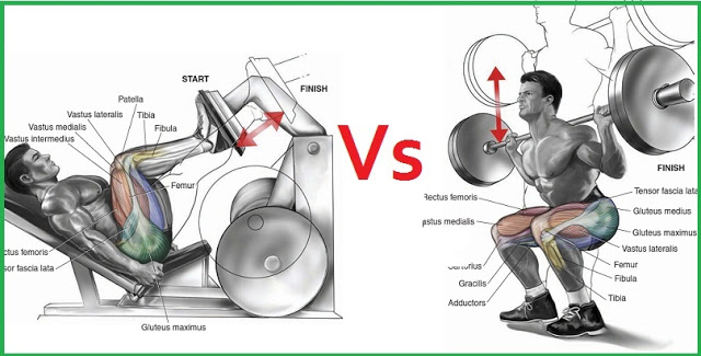 Squats Vs Leg Press - Which Exercise is Better - Gym Guider