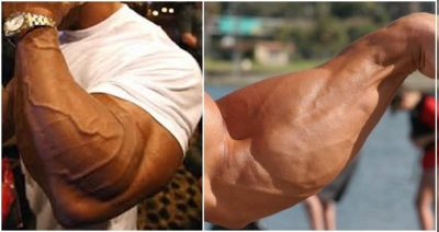 Gym Guider Workout Routines and Training Plan For Men ...