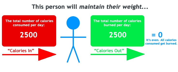 Excess Calories Needed To Build Muscle