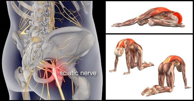 8 Exercises to Relieve Sciatica Pain - Gym Guider