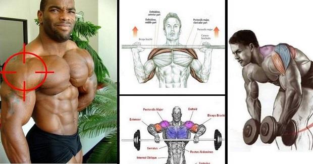 Home - Gym Guider