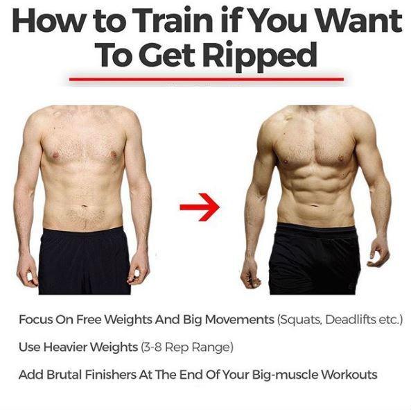 Supplements that make you ripped