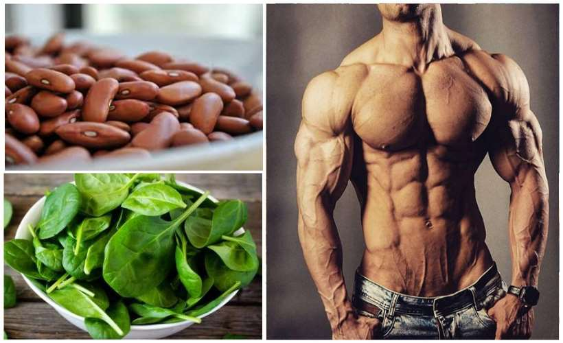 The 20 vegetables highest in protein content gymguider the 20 vegetables highest in protein content workwithnaturefo