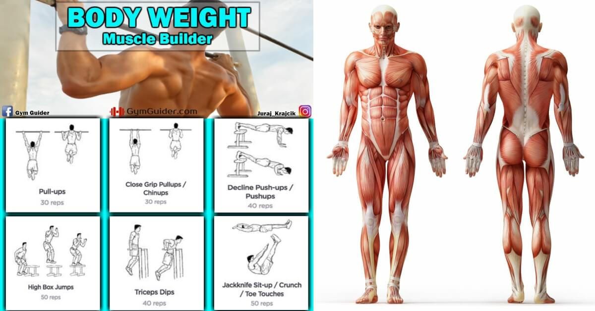 Simple Body Weight Exercises To Assist Weight Loss ...
