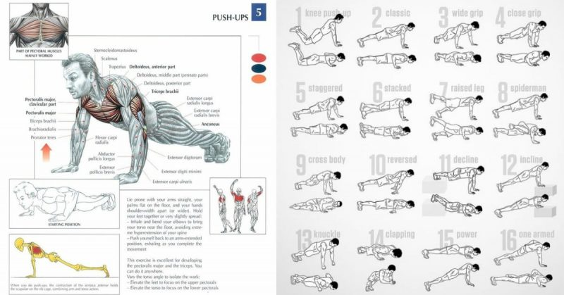 Strong Muscle Defining Push Up Workout With 5 Exercises