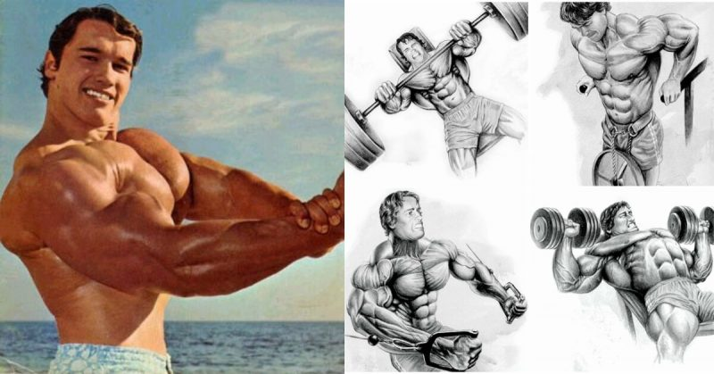 Arnolds classic 4 exercise chest workout gymguider arnolds classic 4 exercise chest workout malvernweather Choice Image
