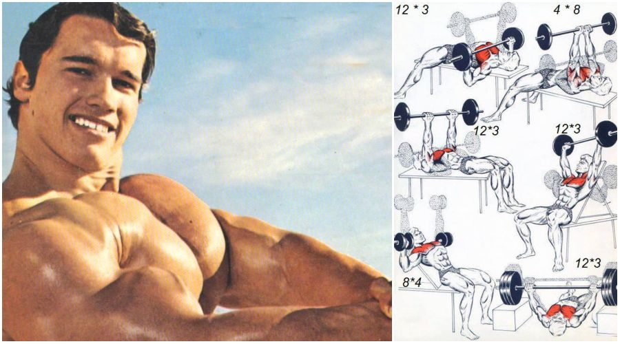 Arnolds classic 4 exercise chest workout gymguider arnold classic chest workout malvernweather Gallery