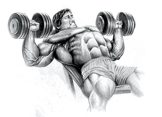 Classic 4 exercise mr olympia chest workout my fitness closet now add some three quarter dips to the mix and youll be right on the road to arnolds famous chest fullness malvernweather Gallery