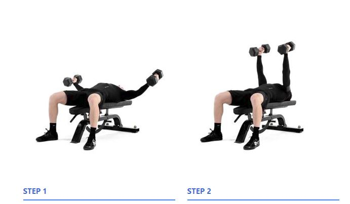 flat bench dumbbell fly - 28 images - flat dumbbell fly www pixshark com images galleries, flat ...