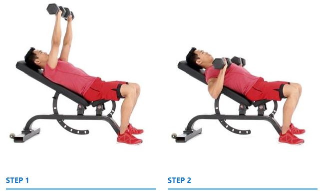 Mastering seated incline decline press guide form flaws set up execution - Incline and decline bench press ...
