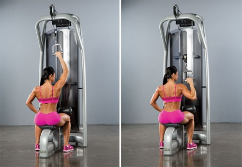 Mastering The Single-Arm Lat Pull-Down: Guide, Form, Flaws, Set Up ...