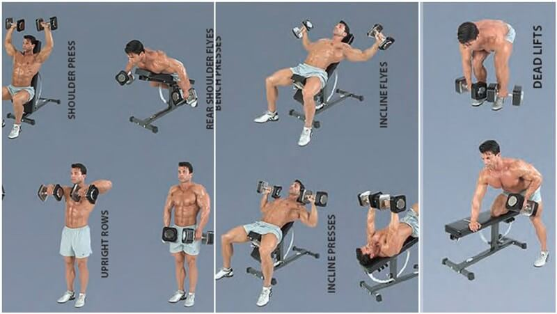 Dumbbell Training: What Are The Benefits Of Training With ...