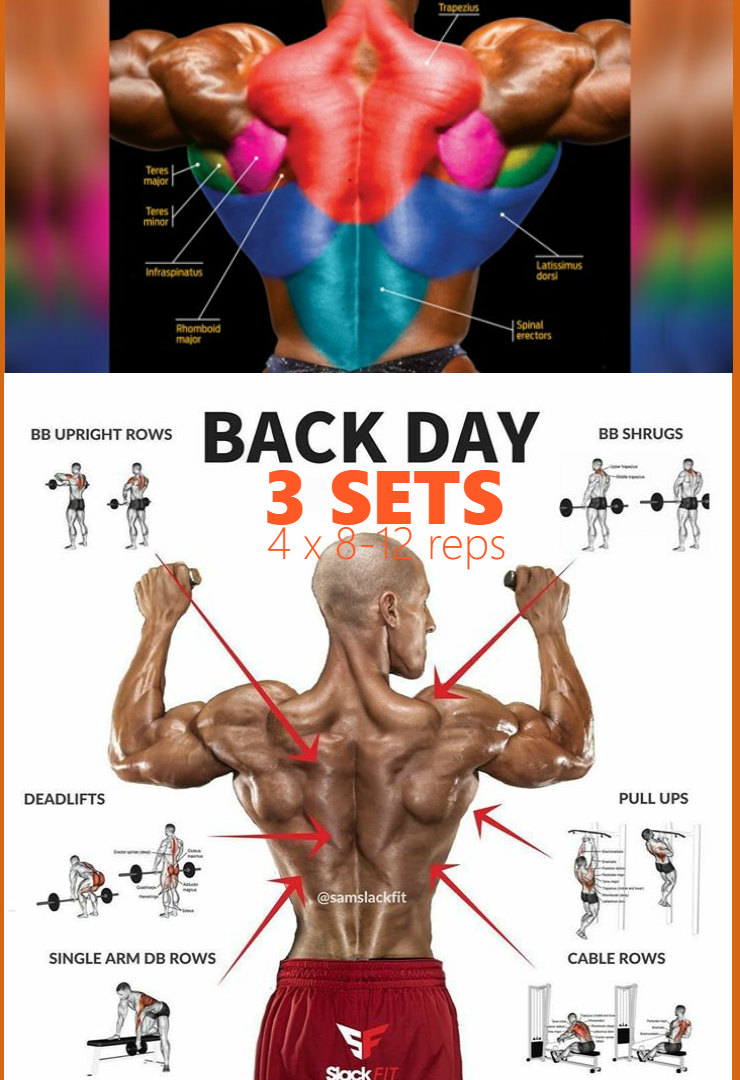 Build An Incredible Back With This 30 Minute Workout ...