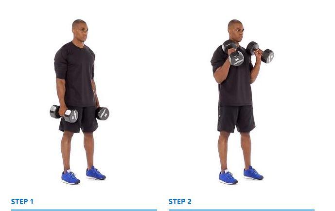 Cross Body Dumbbell Hammer Curl Exercise