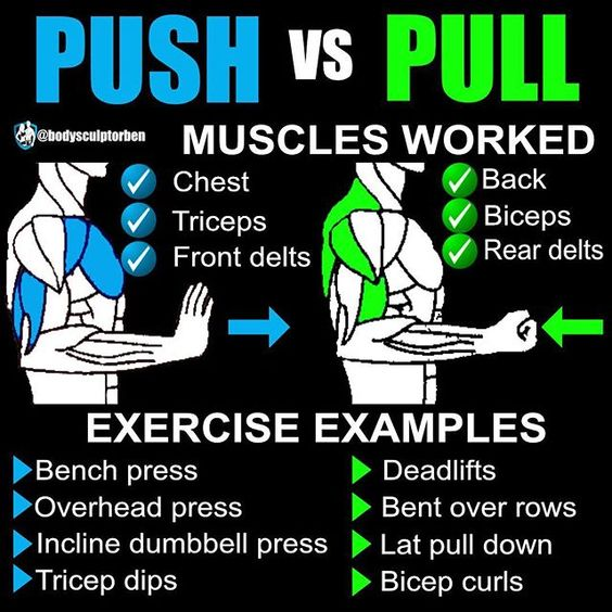 8 POWERFUL MUSCLE BUILDING GYM TRAINING SPLITS    ~ Fitness