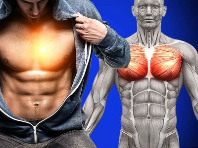Muscle growth chest workout