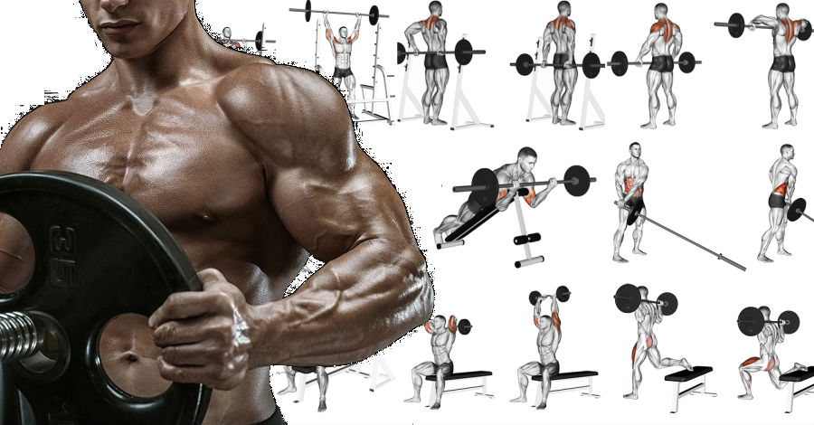 Total Body Workout for men and omen Using Only A Barbell