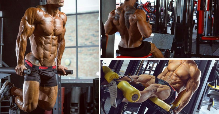The Push Pull Legs Workout Routine for Massive Size Gains