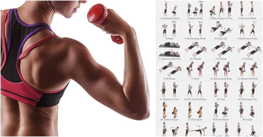 14 exercise sexy arms
