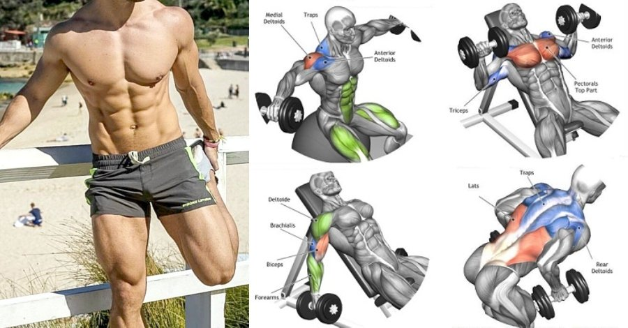 Back To Back Dumbbell Exercises To Build Full Body Strength And