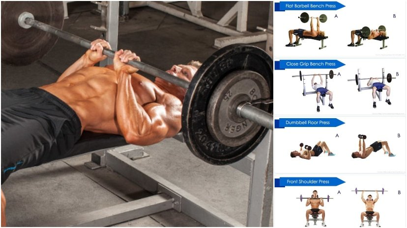 Bench Press Effectively And Safely